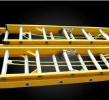 Scaletta della vetroresina isolata estensione della scaletta di punto