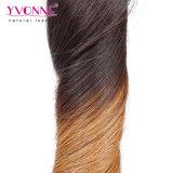 Cabelo humano brasileiro Curly de Remy da cor de Ombre da forma