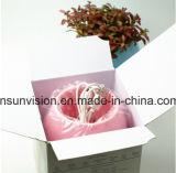 Regalo de la promoción de la impresión de la insignia del crisol de flor de la planta de la música de Bluetooth