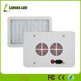 Pflanze des 100X10W 1000W LED Pflanzenlicht-wachsen volle Spektrum-LED Licht