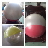 Esfera inflável da ginástica No1-12 75 esferas da ginástica do Cm com logotipo feito sob encomenda