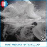 L'oca bianca giù mette le piume al riempimento per il cuscino ed il rivestimento di inverno giù