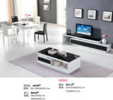 Mobilia moderna del basamento di disegno semplice TV (057)