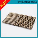 i bit di trivello 10PCS hanno impostato per la perforazione di legno Drilling del metallo