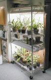 Crémaillère réglable d'aménagement de fil d'étalage de fleur de chrome de DIY pour l'usage de serre chaude