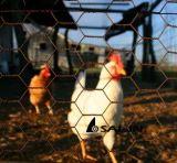 Alambre de acero del alambre de pollo de Sailin para las herramientas de la granja