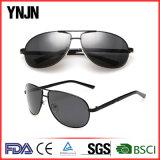 [ينجن] [غود قوليتي] كلاسيكيّة الصين نظّارات شمس مصنع ([يج-ف8605])