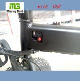 Batteria nascosta con la bici piegante elettrica della gomma grassa del USB