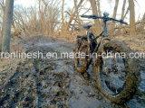 3/7/8speed20X4/26X4 MTB fettes Fahrrad/breit/fettes Reifen-Fahrrad/fettes Gummireifen-Fahrrad/Schnee-Fahrrad/fetthaltiges Fahrrad/Fahrrad-/Kind-Fett-Fahrrad