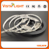 Waterdichte 24V Multicolor LED Light Strip voor Night Clubs