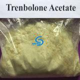 De Ruwe Eerlijke Prijzen van uitstekende kwaliteit van de Acetaat Trenbolone voor de Groei van Spieren