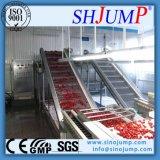 Cereja automática cheia que processa a maquinaria para a produção do atolamento/suco de cereja