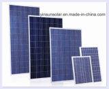 comitato solare 100W con approvazione del Ce e di iso (YSP100-12P)