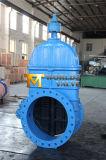 Запорная заслонка дуктильного утюга резиновый Coated для трубы водопровода