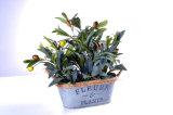 Искусственний завод оливки в плантаторе олова с декоративной пеньковой веревкой для украшения в доме/офисе