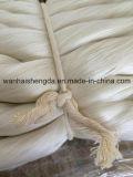 hilado de seda sin procesar de mora blanca de 20/22D 27/29d 40/44D el 100%