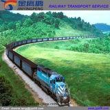 De Vorm China van de Dienst van de logistiek/van het Vervoer van de Spoorweg aan Rotterdam/Rusland