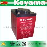 batería profunda del ciclo de 6V 225ah para el barco/el barrendero/el carro de golf