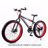 Preiswerter Kohlenstoff-fettes Gummireifen-Fahrrad-Gebirgsfahrrad (ly-a-6)