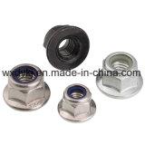 Noix en nylon de bride de garniture intérieure d'acier inoxydable