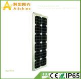 Nuevo 40W 5 años de la garantía de la alta calidad del cortocircuito de expedición del plazo de luz de calle solar integrada