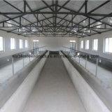 Edifício de aço claro pré-fabricado da construção da exploração agrícola da vaca do baixo custo do ISO para a venda