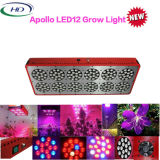 Morden Design Apollo 12 LED Grow Light para Floração de Veg hidropônica