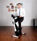 Vélos droits neufs de bureau avec la tablette et le reste arrière
