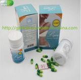 Pillules de régime diététiques de fines herbes saines normales de Lipro pour la perte de poids