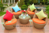 Il sofà esterno moderno del rattan del PE del giardino imposta la mobilia (LL-RST003)