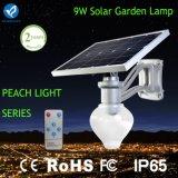 Montaggio chiaro solare della parete dell'indicatore luminoso del percorso del giardino LED 9W 10W 12W
