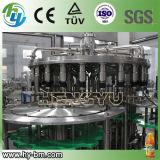 Chaîne de production remplissante de jus automatique de GV (RCGF)