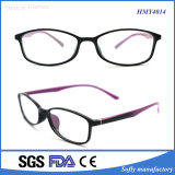 Haute qualité Tr90 Injection Optical Frames Eyeglasses