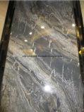 建築材料の大理石完全なボディ大理石の磁器のタイル