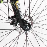 vélo électrique de ville de gros pneu de 48V 350W avec la batterie au lithium cachée