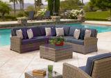 mobilia sezionale del sofà del giardino di by-472 Brown esterna