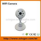 무선 숨겨지은 안전 CCTV PTZ 적외선 감시 사진기