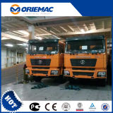 Camion à benne basculante de l'Algérie F2000 6X4 de camion de Shacman de Camion avec 290HP