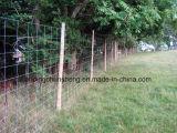 Panneaux de frontière de sécurité de bétail de la Chine/frontière de sécurité en bloc en gros de bétail pour des moutons (constructeur)