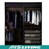 Цветастый шикарный шкаф шкафа в просто типе (AIS-W73)