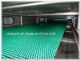 De Chinese Beroemde Granulator van de Paraffine met Ce, SGS