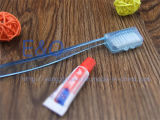 Toothbrush a gettare quotidiano dell'adulto pp