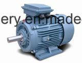 Motor assíncrono trifásico da série de Y