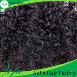 Горячее продавая людское выдвижение Kinky волос Afro волос Remy