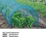 정원 순수한 덮개를 가진 식물성 갱도 온실
