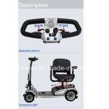 Motorino Handicapped del motorino reso non valido motorino di Trike del passeggero con la carrozza