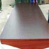 La base de la madera dura o la base 12m m 15m m 18m m Brown o película del álamo de color negra hizo frente a la madera contrachapada de la construcción con el mejor precio