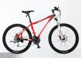 Велосипед/Bike горы для горячего сбывания (MTB-089)