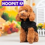 Casual Stylish Sports Casual Canine Dog Clothes