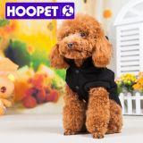 Vestiti canini casuali del cane di sport alla moda casuali